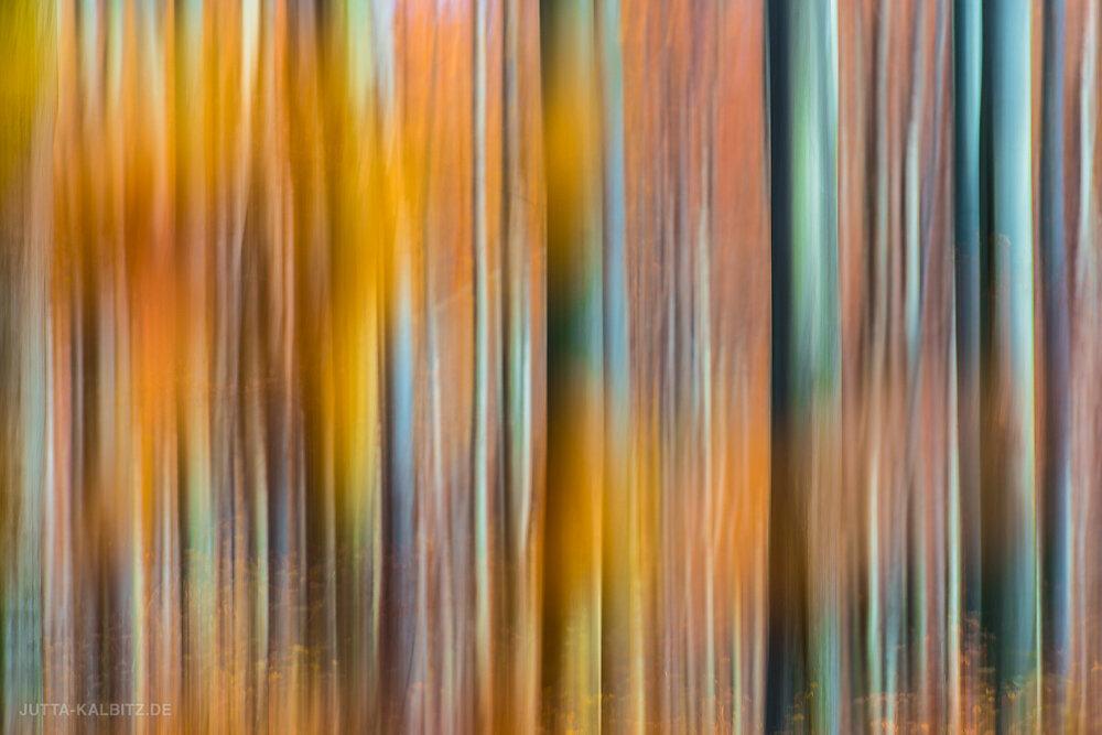 Herbstwald II (Wischtechnik)