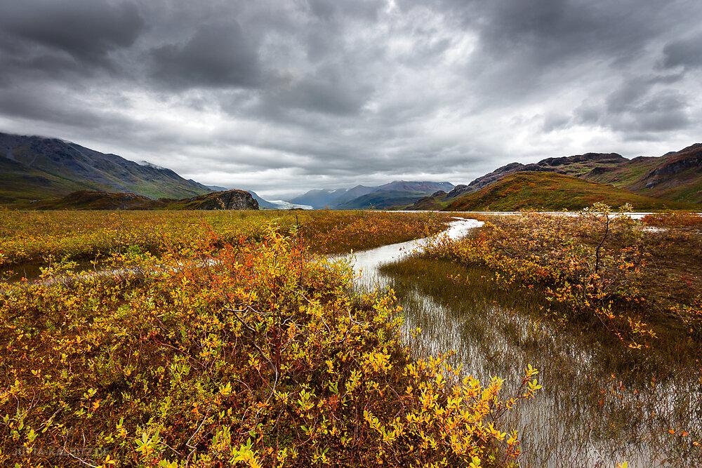 Mac Laren River