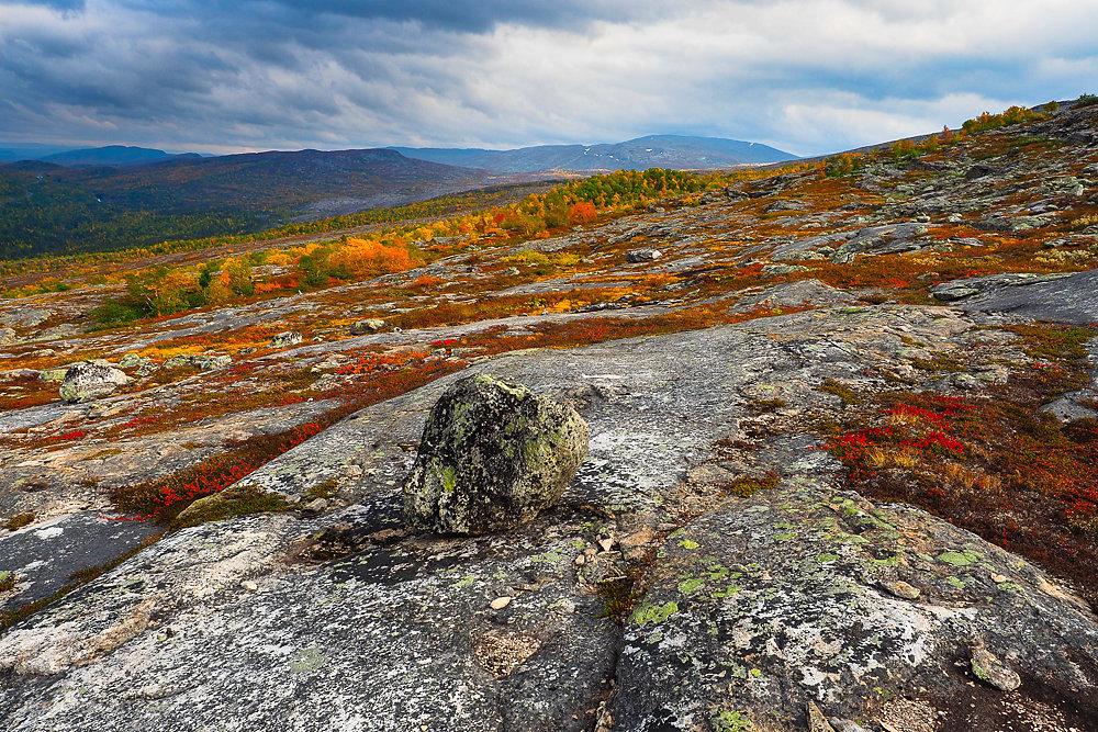 September im Saltfjell
