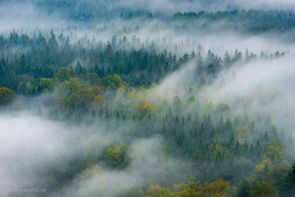 Spätsommer im Elbsandsteingebirge