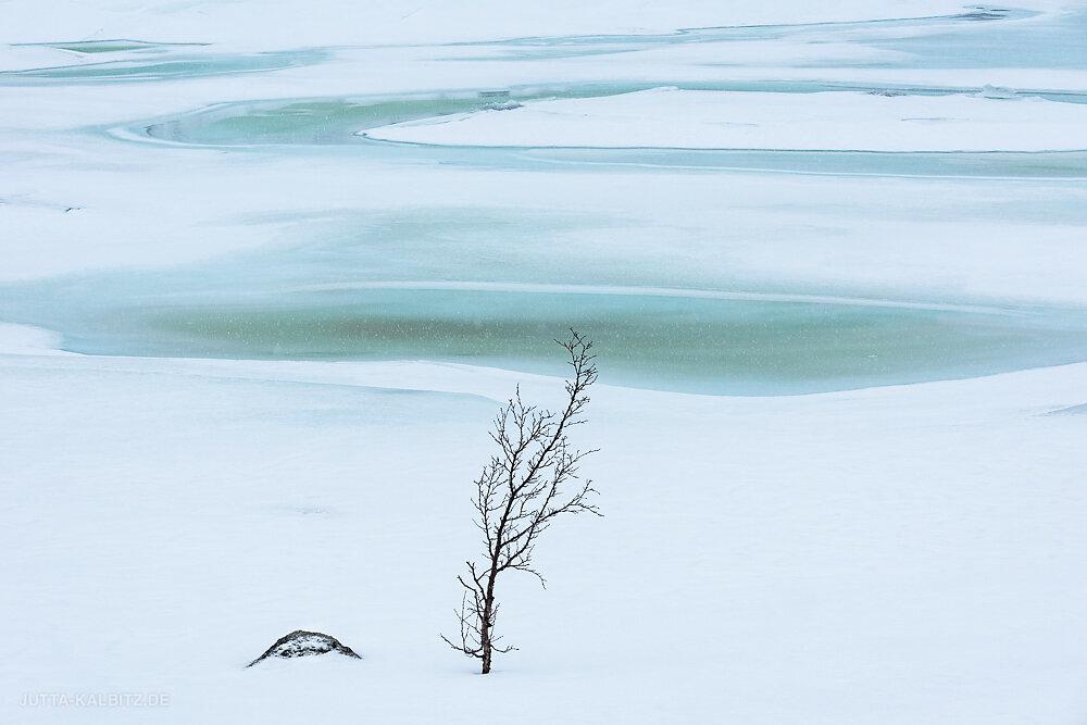 Blog-Winterreise-20.JPG